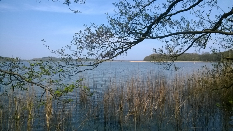 WP 20160501 11 27 41 Pro - Die Insel Usedom