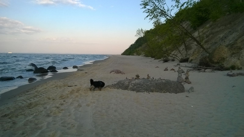Hund, Katze, Ferienhaus, Ferienwohnung, Insel, Usedom, Ahlbeck, Heringsdorf, Bansin