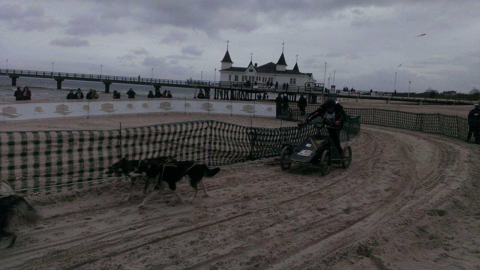 Baltic Lights - Schlittenhunderennen am Kaiserbäder-Strand
